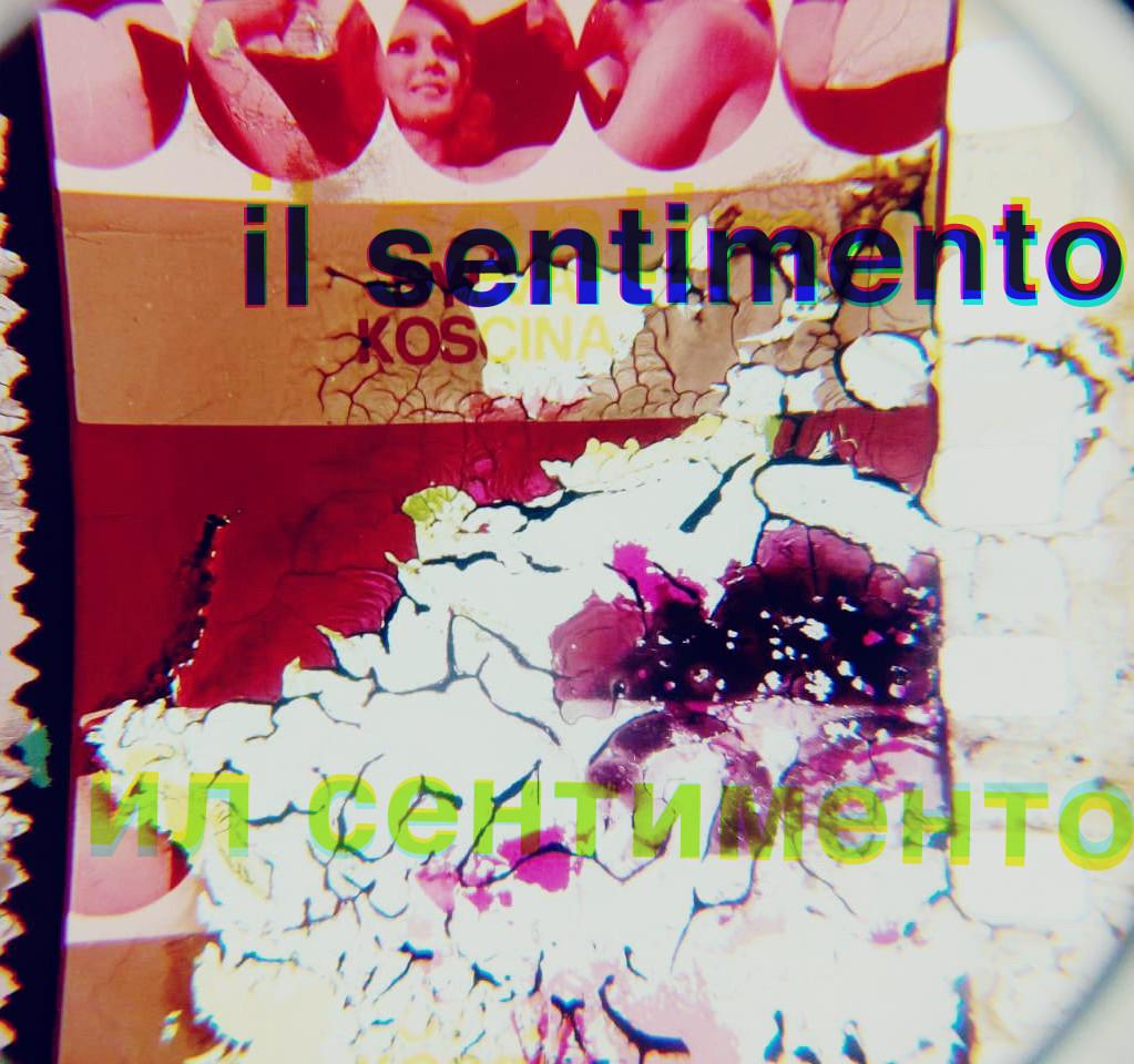 IL SENTIMENTO - Gustavo Guzmán.jpg